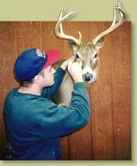 Pennsylvania institute of taxidermy inc why taxidermy for Ebensburg hunting and fishing